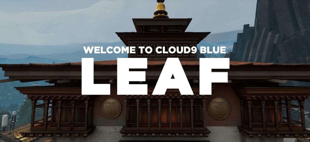 cloud 9 leaf